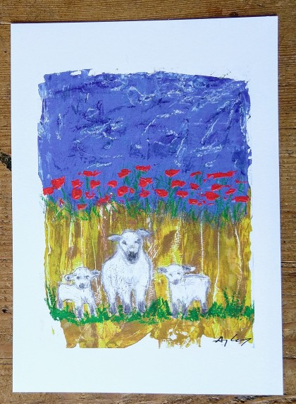 sheepsample